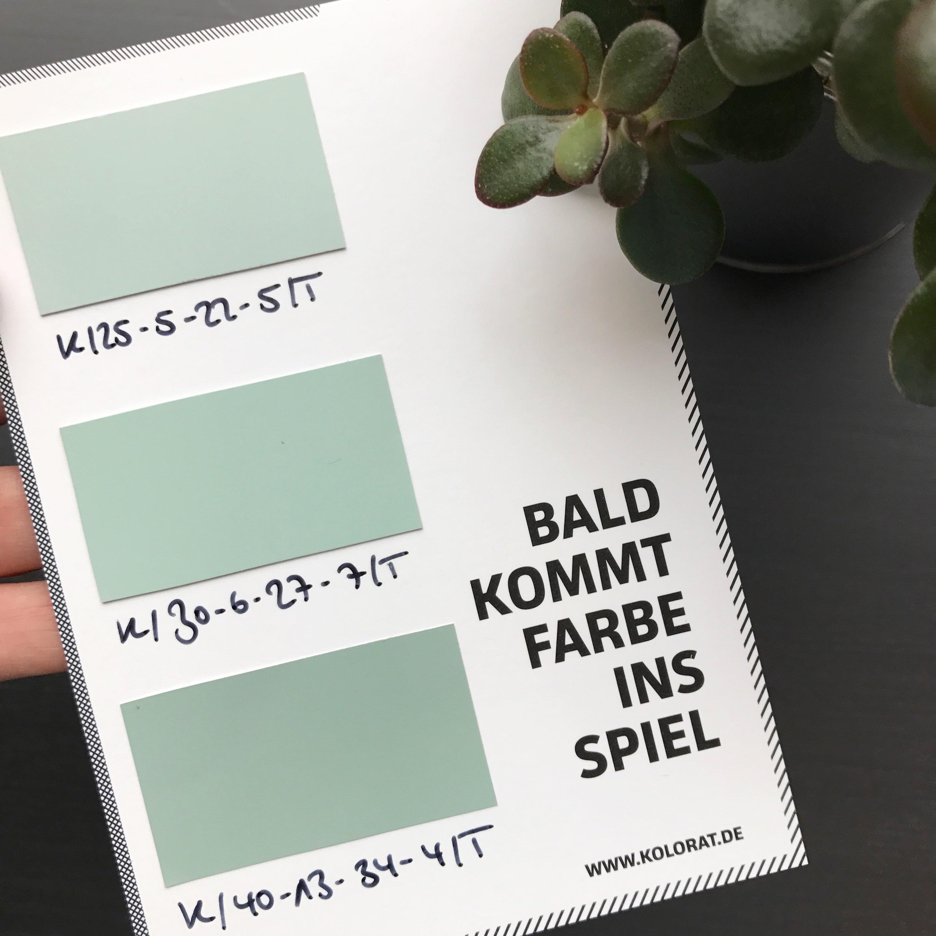 Mint Salbei Kolorat Wandfarbe Farbmix Farbe