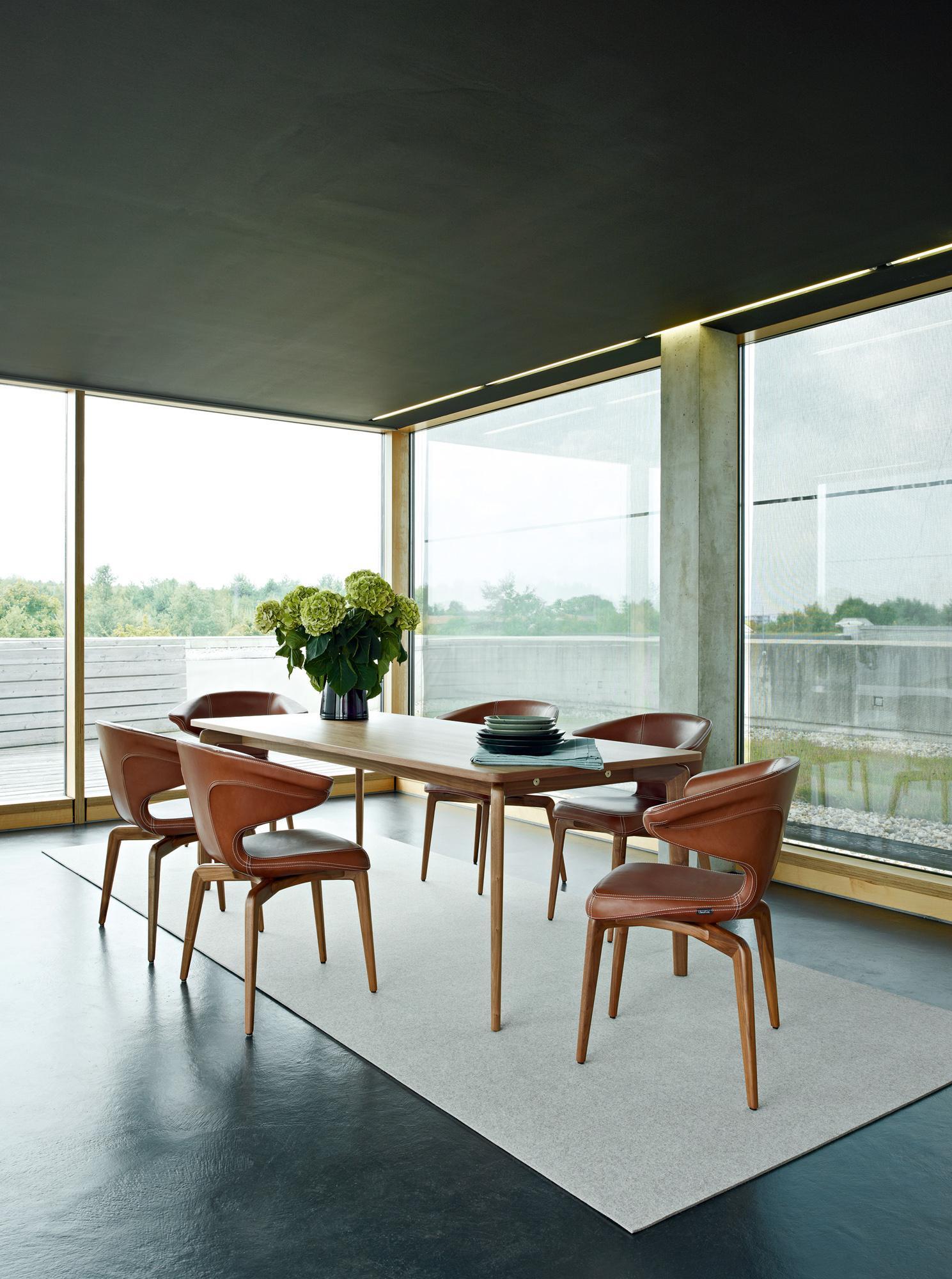 munich armchairs und munich table im modernen ambiente esstisch esszimmerteppich - Teppich Unter Esstisch