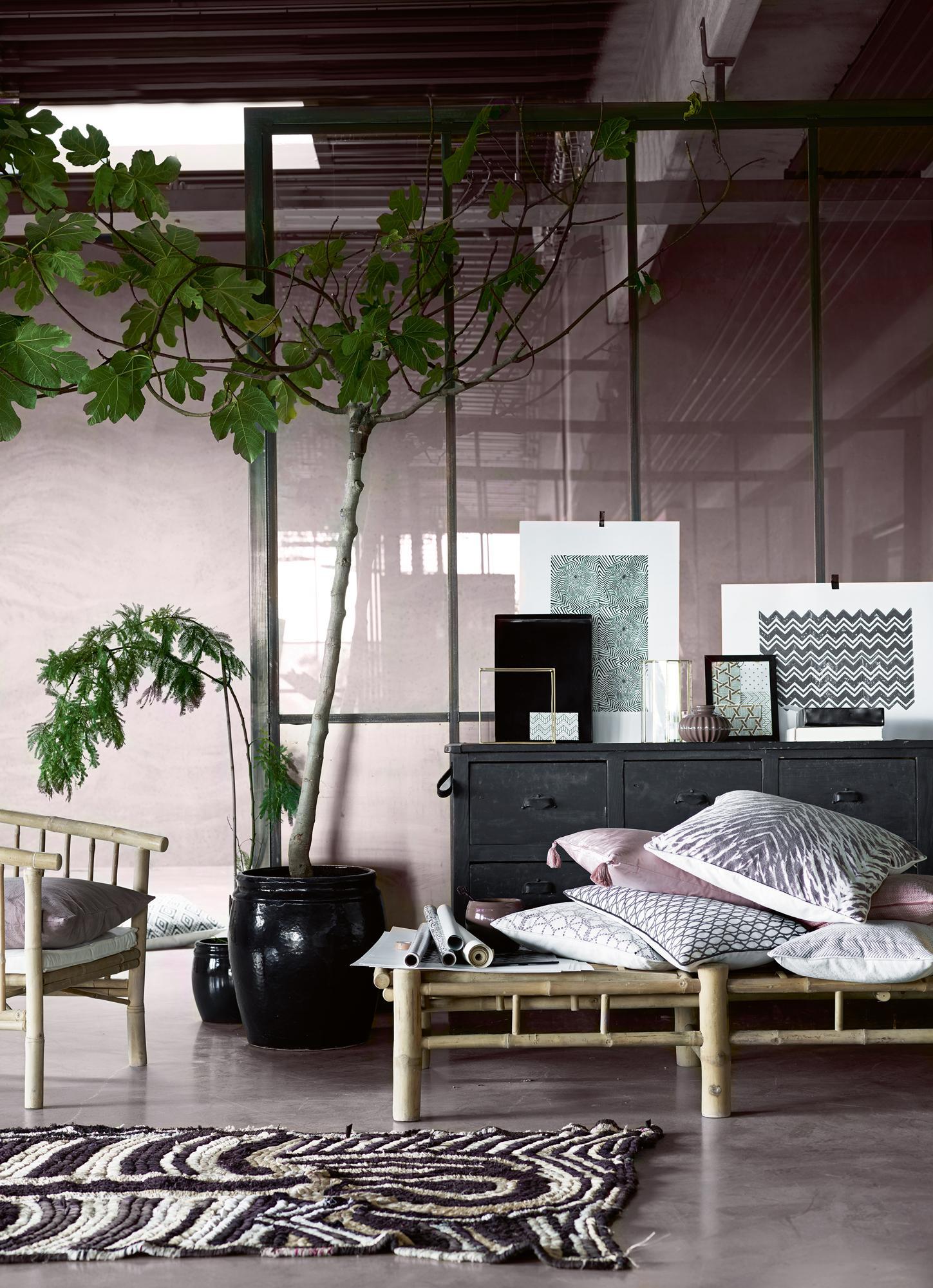 Natur Pur: Eine Große Zimmerpflanze #wandfarbe #wohnzimmer #trennwand  #glastrennwand ©Tine
