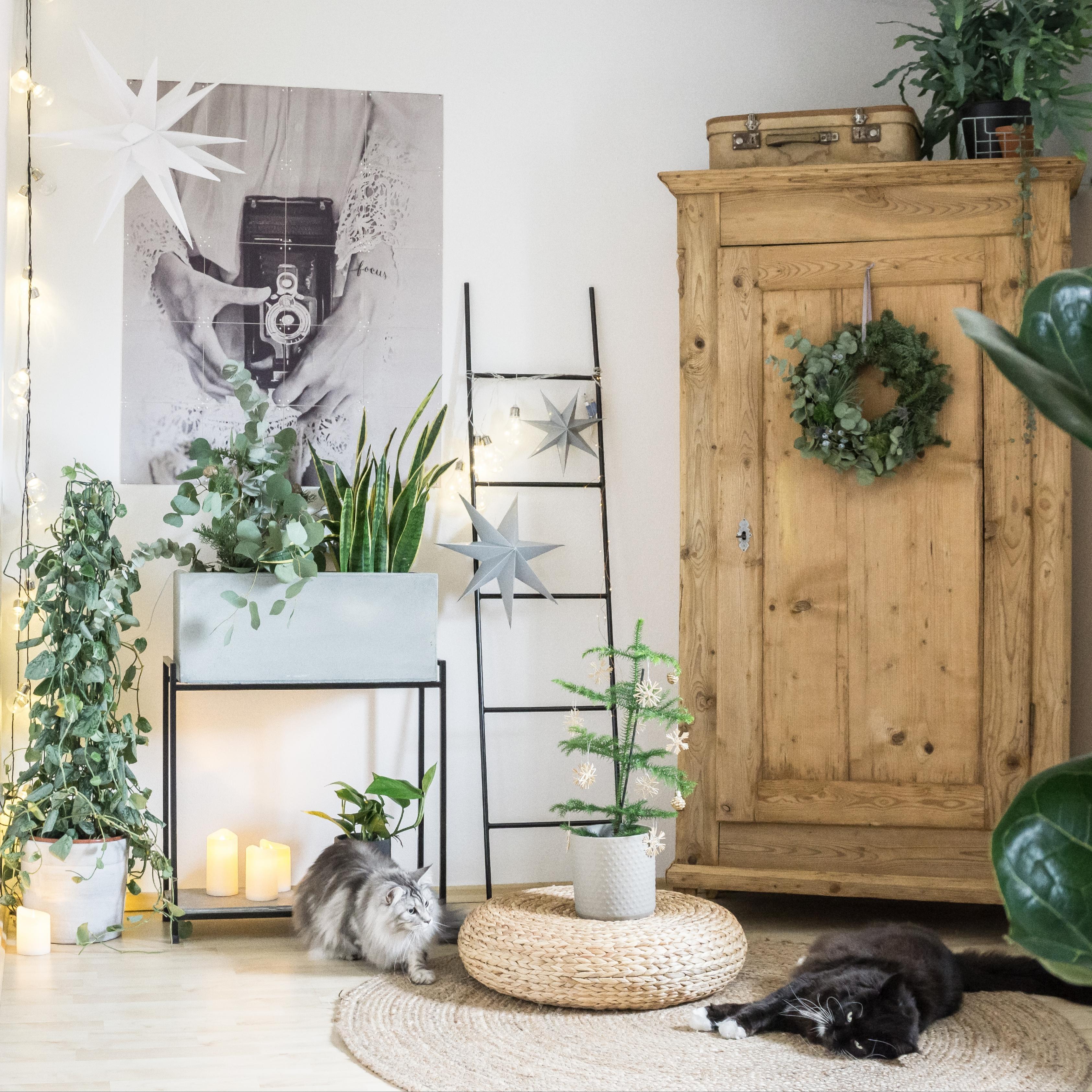 Wohnzimmer-Deko-Ideen: Mach Es Dir Gemütlich