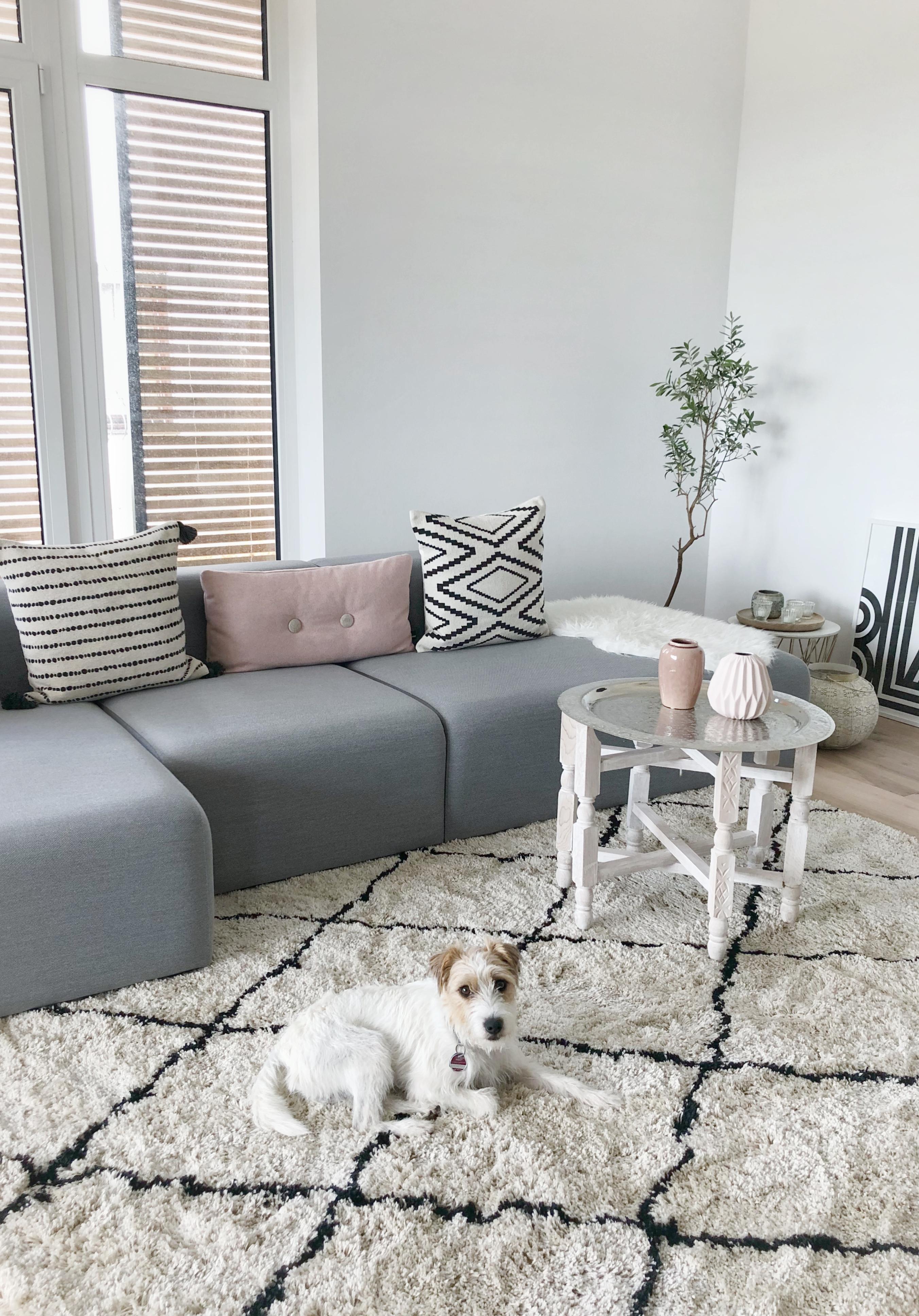 Neuer Teppich ist eingezogen! #teppich#wohnzimmer#w....