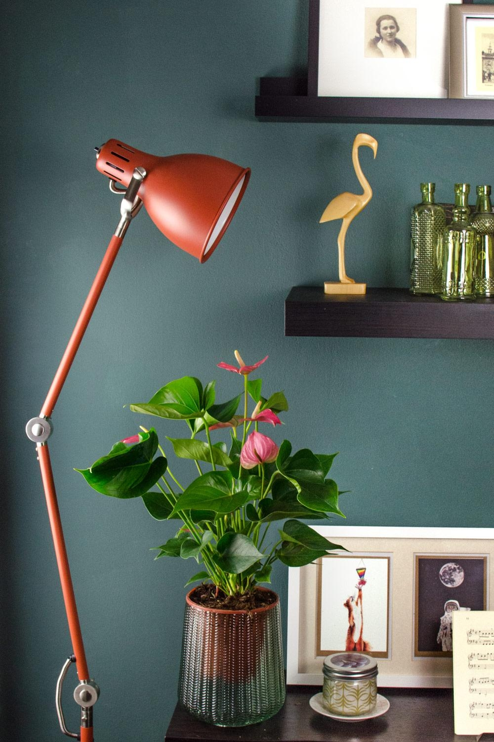 Pantone farbe 2019 coral living nun auch beim stylepeacock coralliving wohntrend darkwalls flamingo boho scandi  0a812978 9d7d 4f0a a2ef 8d6bdb5ec2df