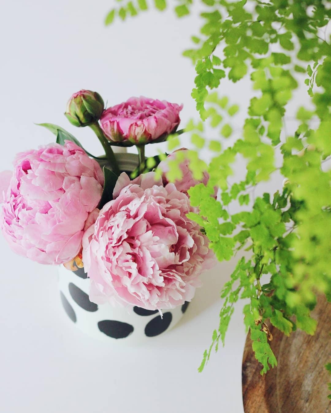 #pfingstrosen #peonies #flowers #urbanjungle