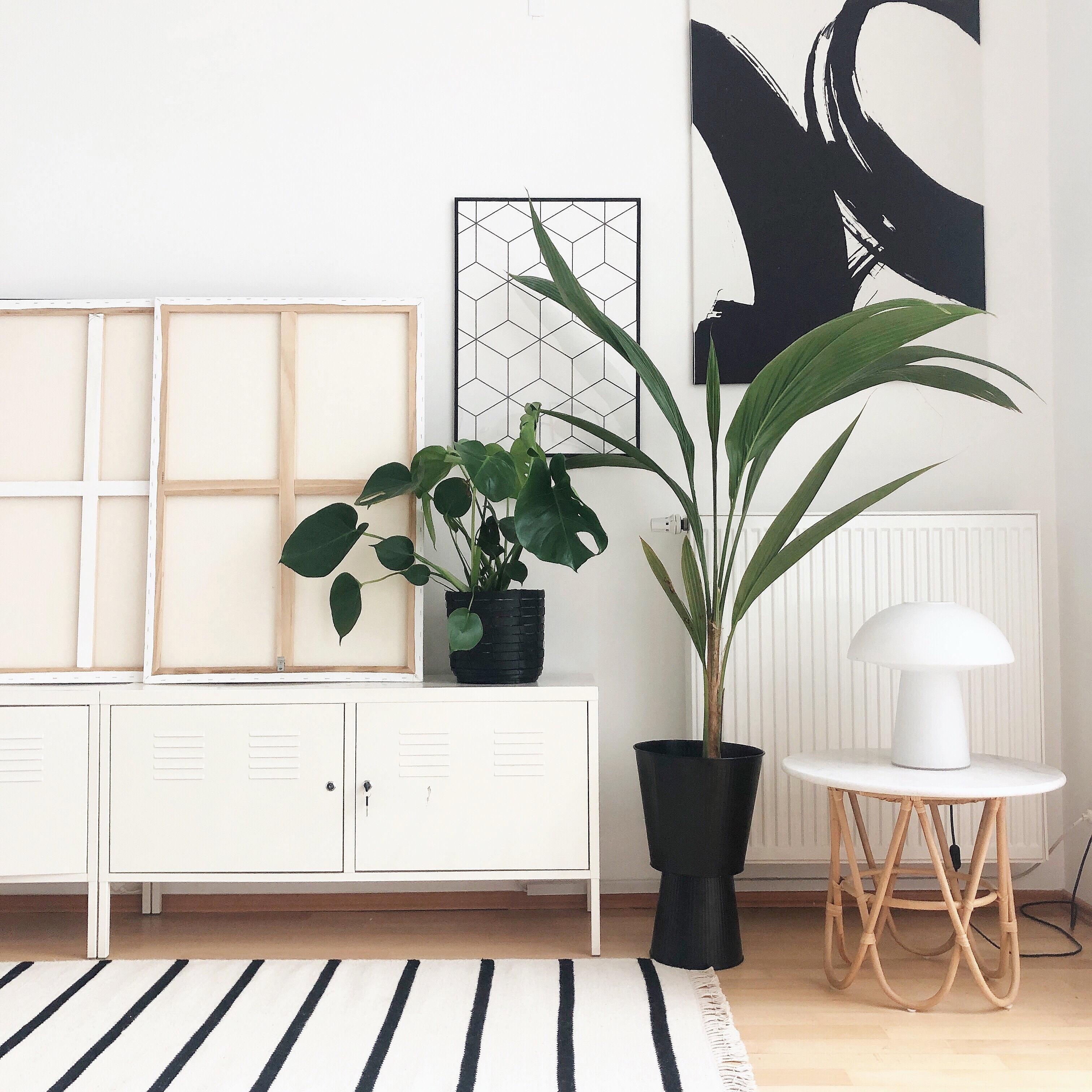 Pflanzendeko • Bilder & Ideen • COUCH