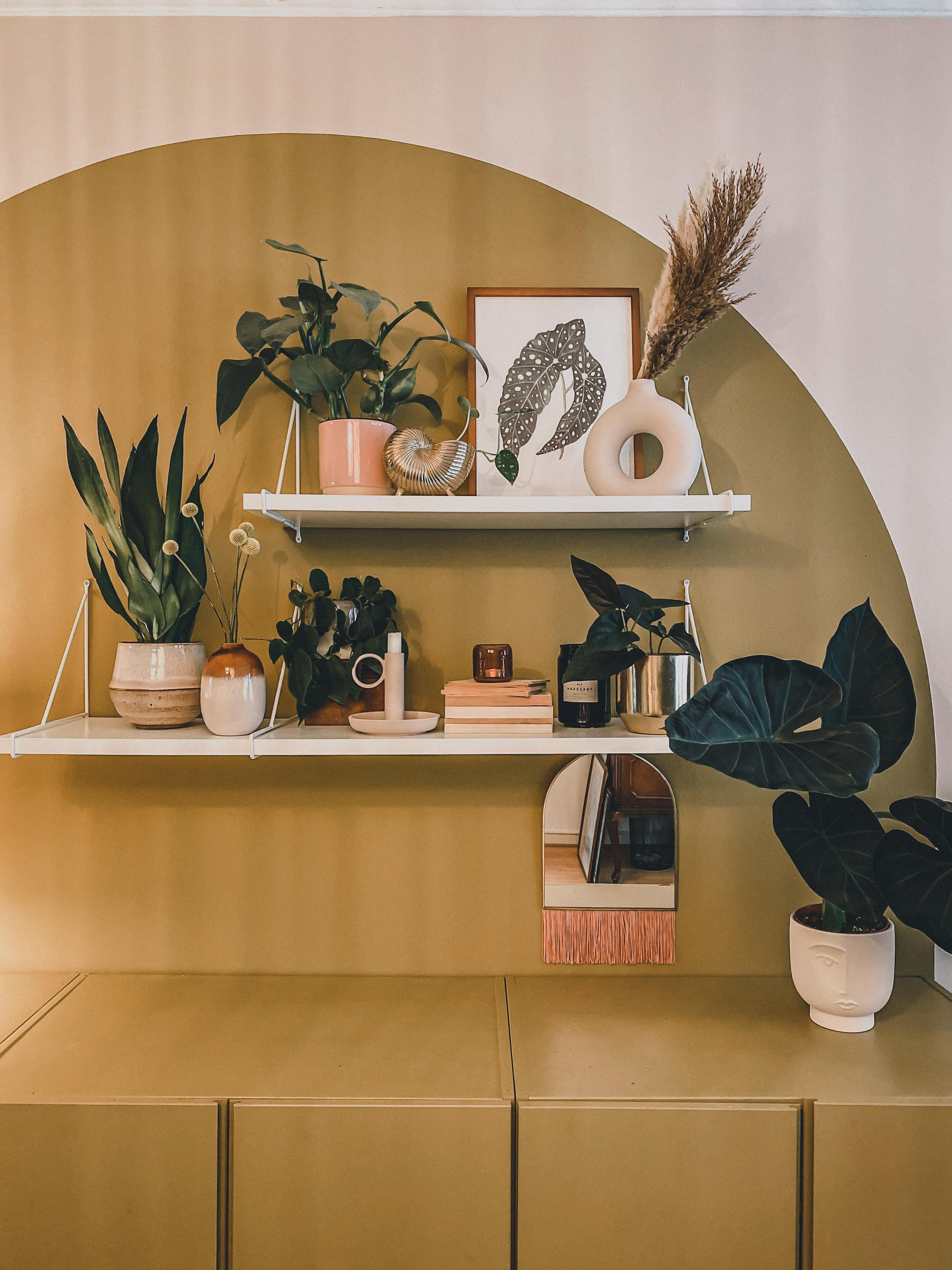Planterior. #living #planterior #plants #decor