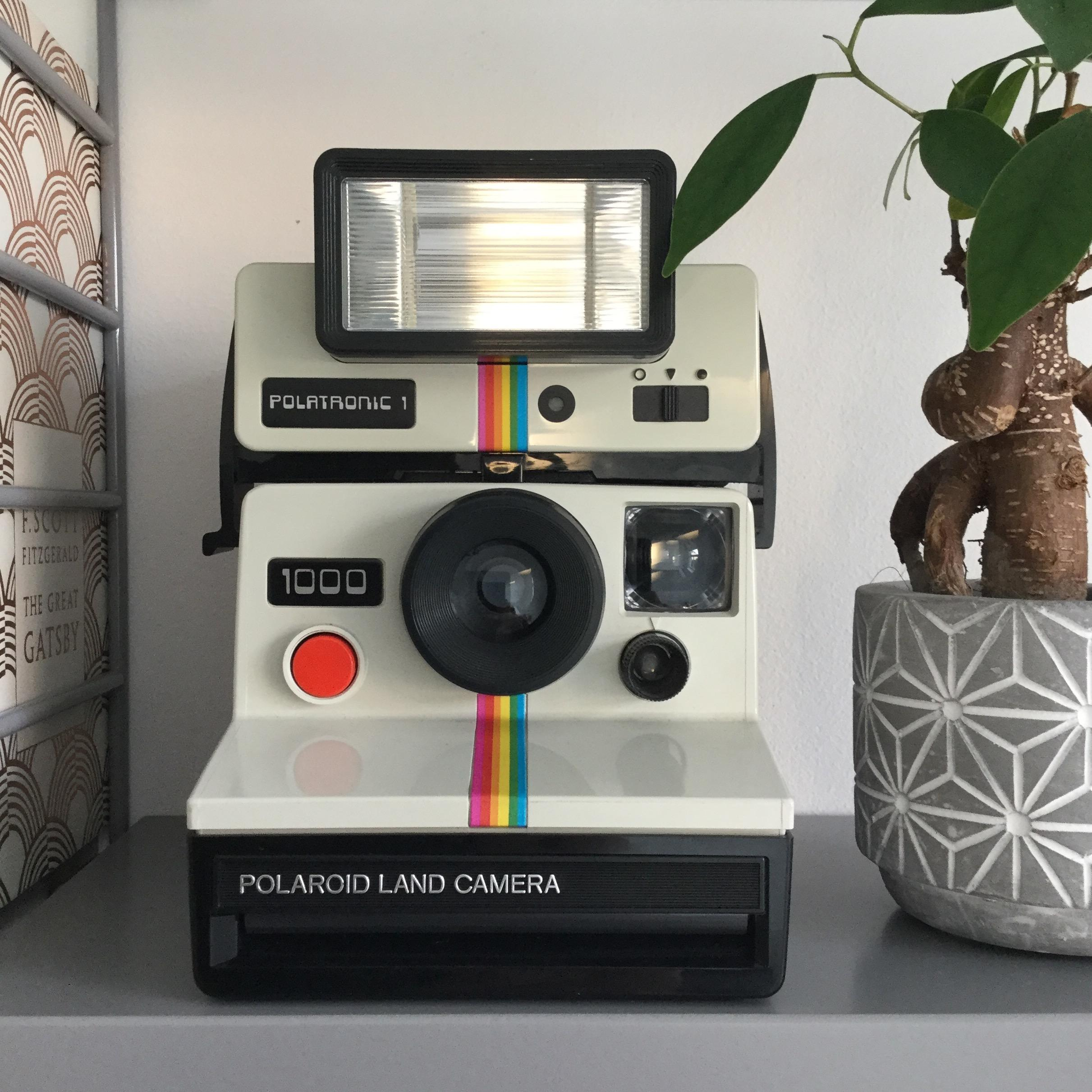 Polaroid #vintage #kamera #deko #stringregal