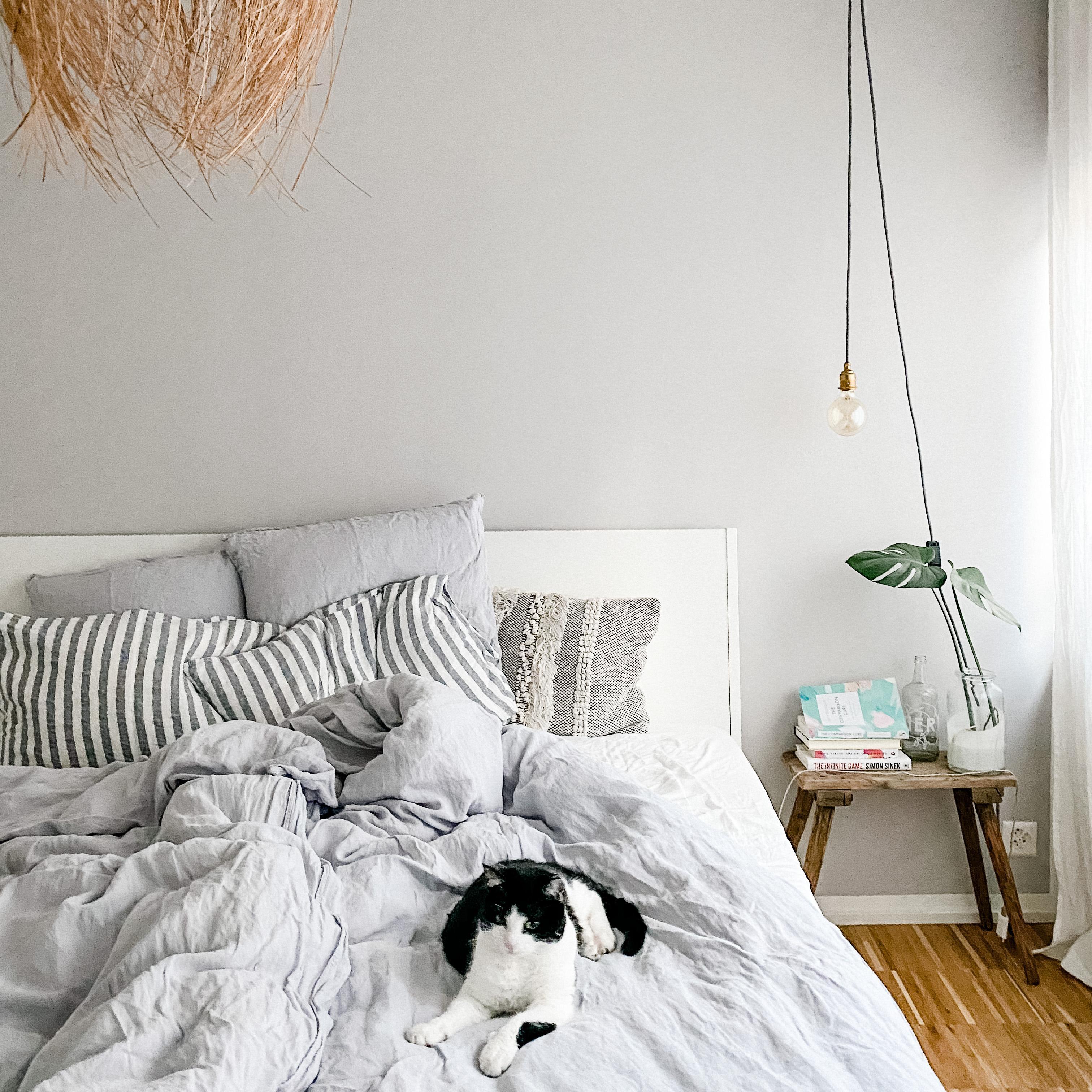 Greige Bilder Ideen Couch