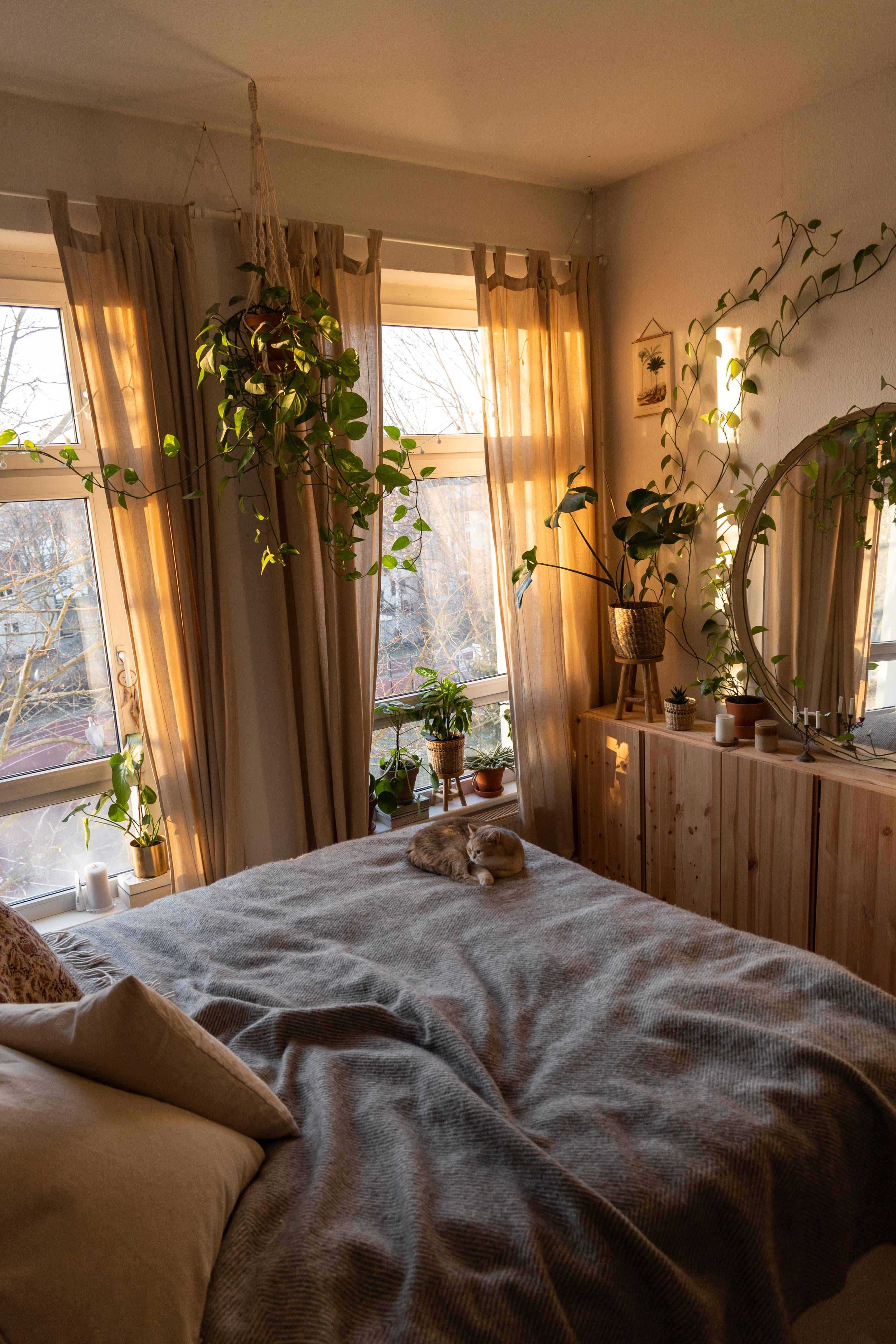 #schlafzimmer #urbanjungle #bohointerior #bedroom #interiorinspo #interiordecor #altbauwohnung #homedecor