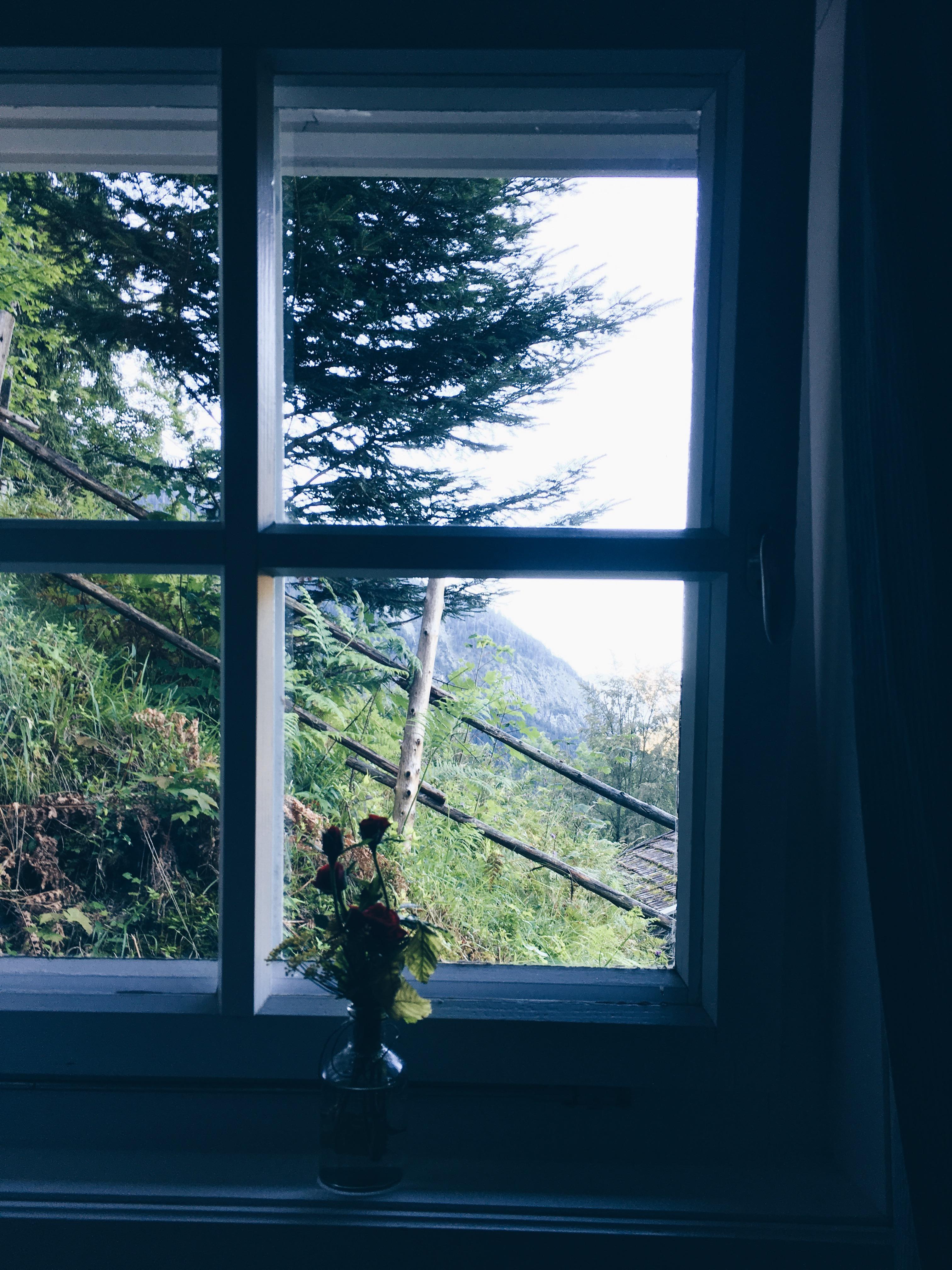 Fensterbank • Bilder & Ideen • COUCH