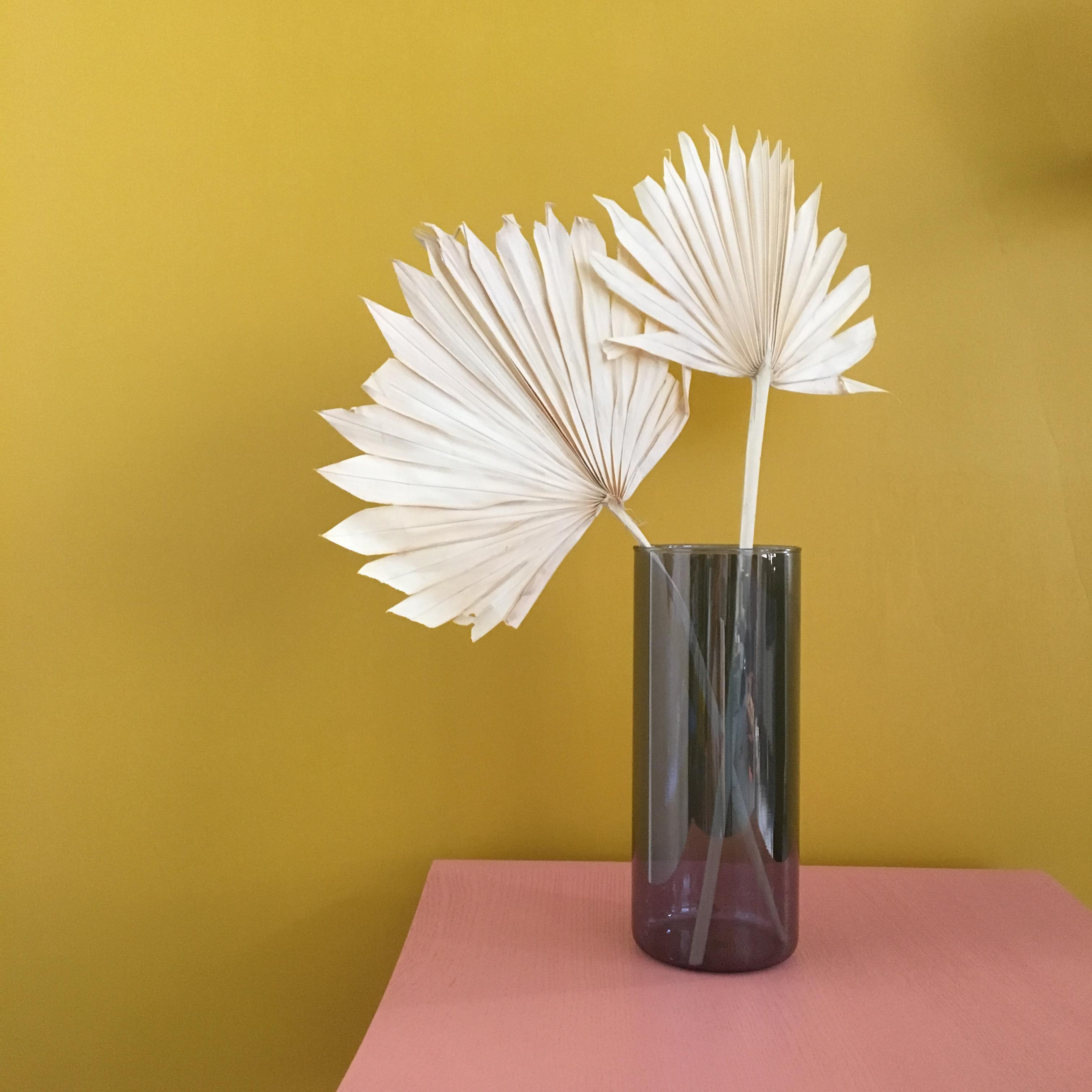 Senfgelbe Wandfarbe Bilder Ideen Couch