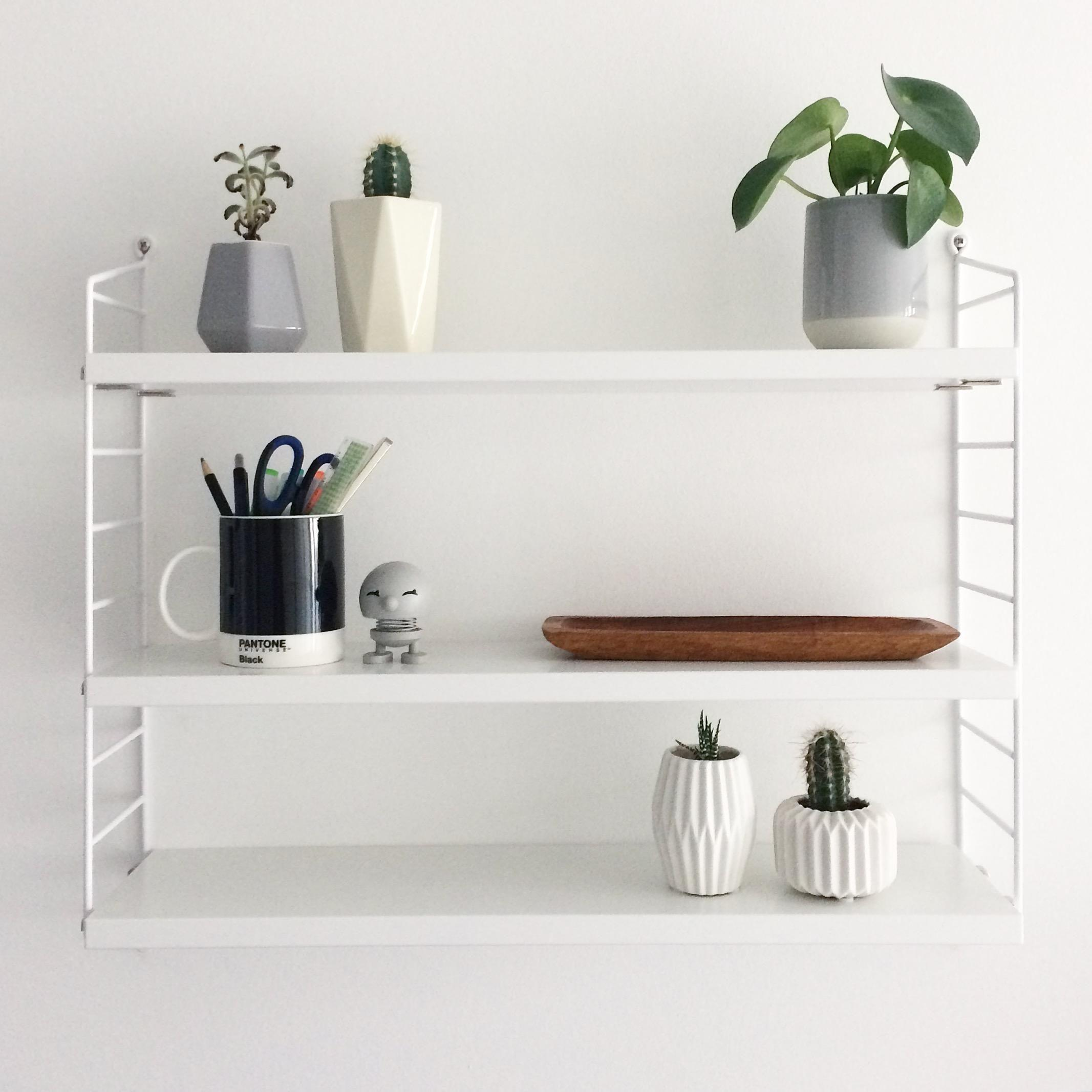 Shelfielove 