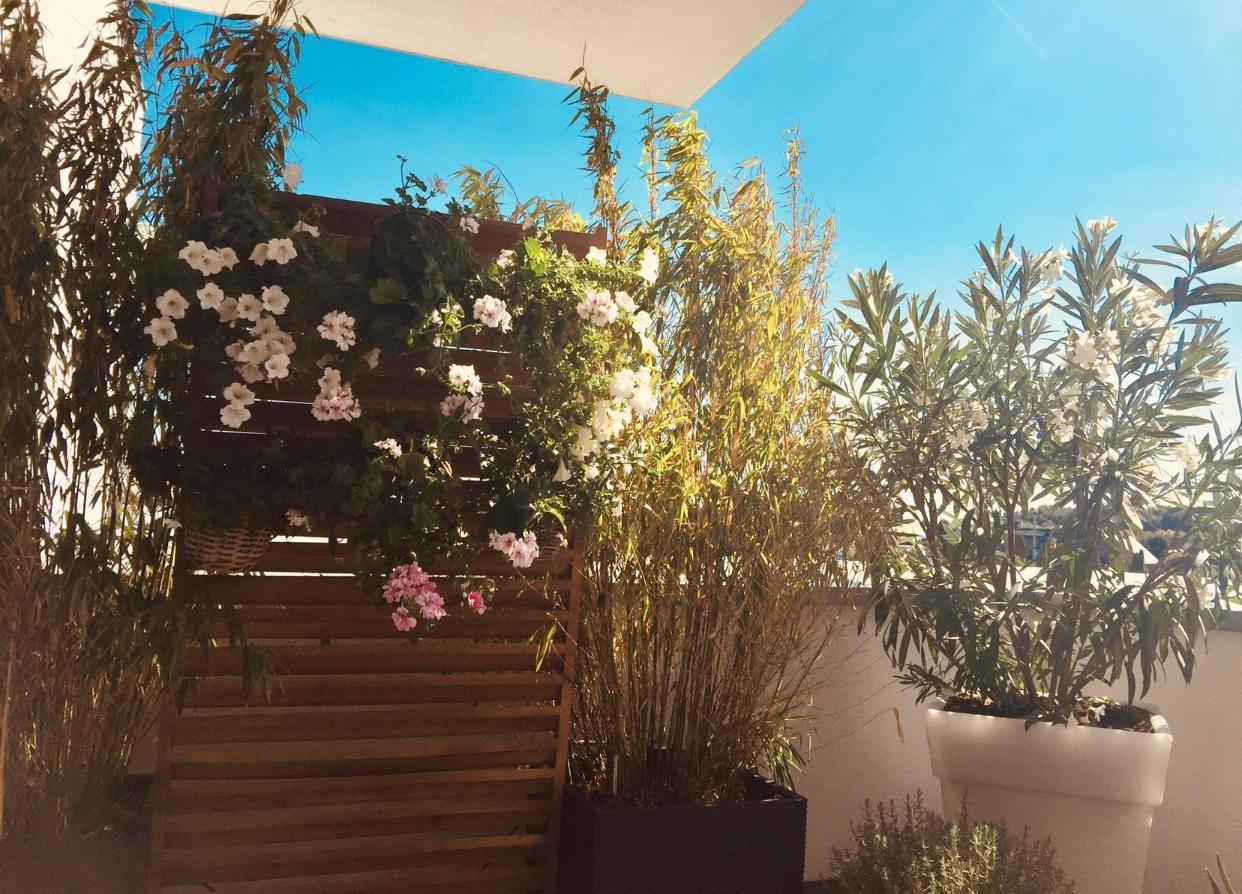 Balkon Mit Sichtschutz Bilder Ideen Couch