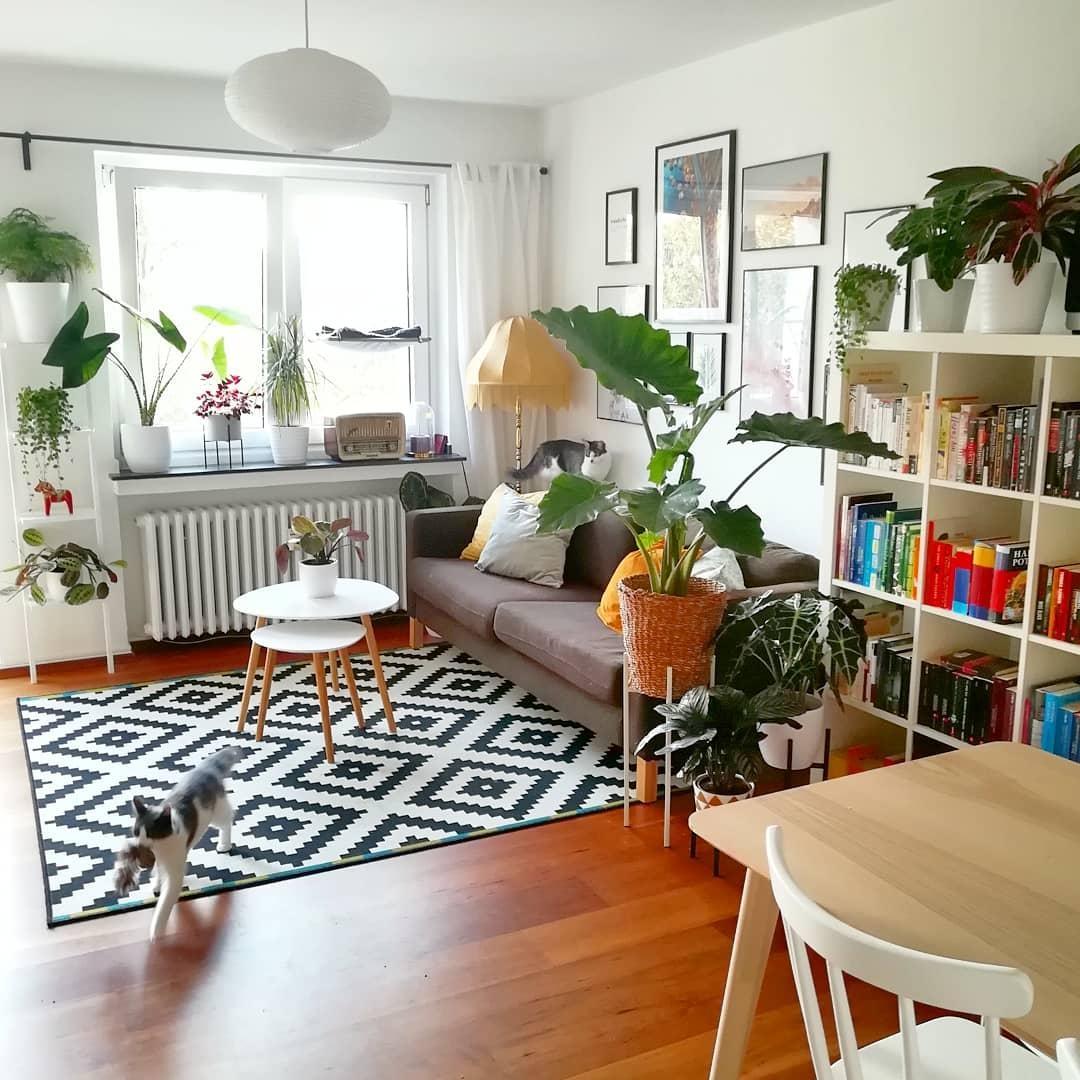 Scandi Boho Urban Jungle In Köln Couch
