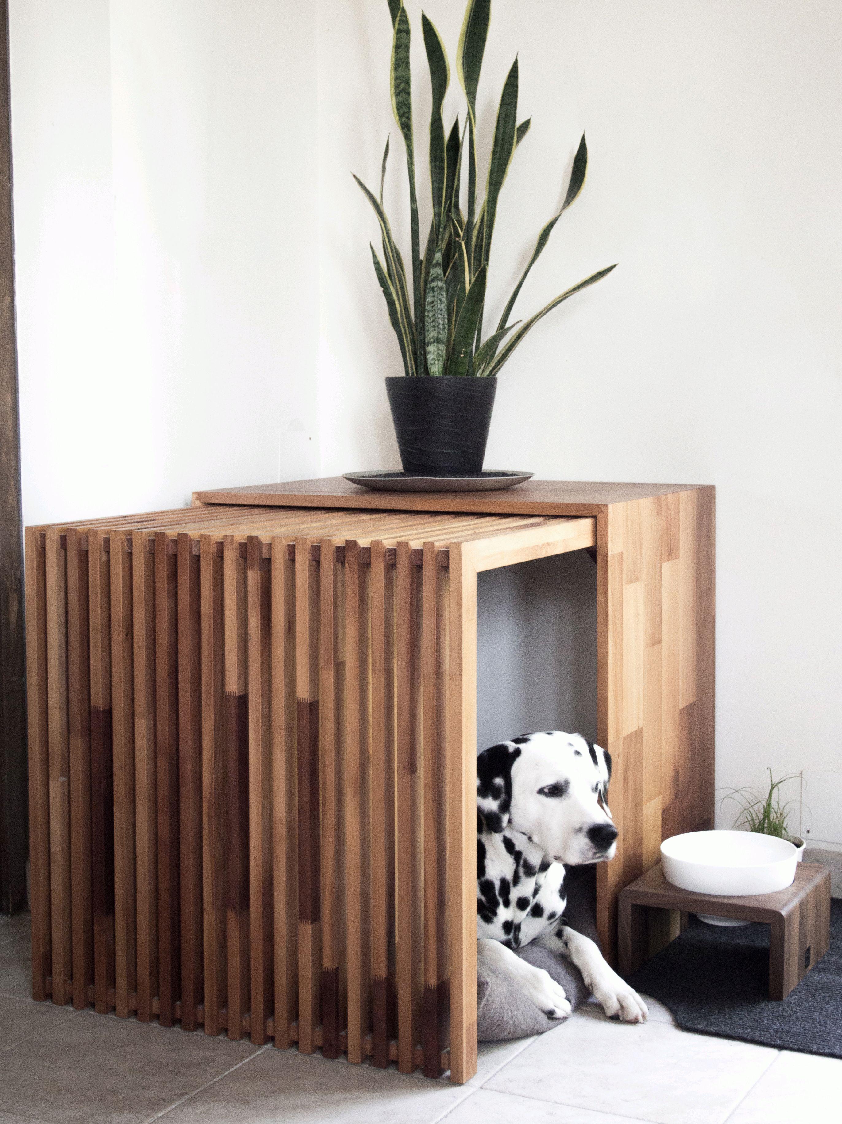 Schöne Hundebetten hundebett bilder ideen couchstyle