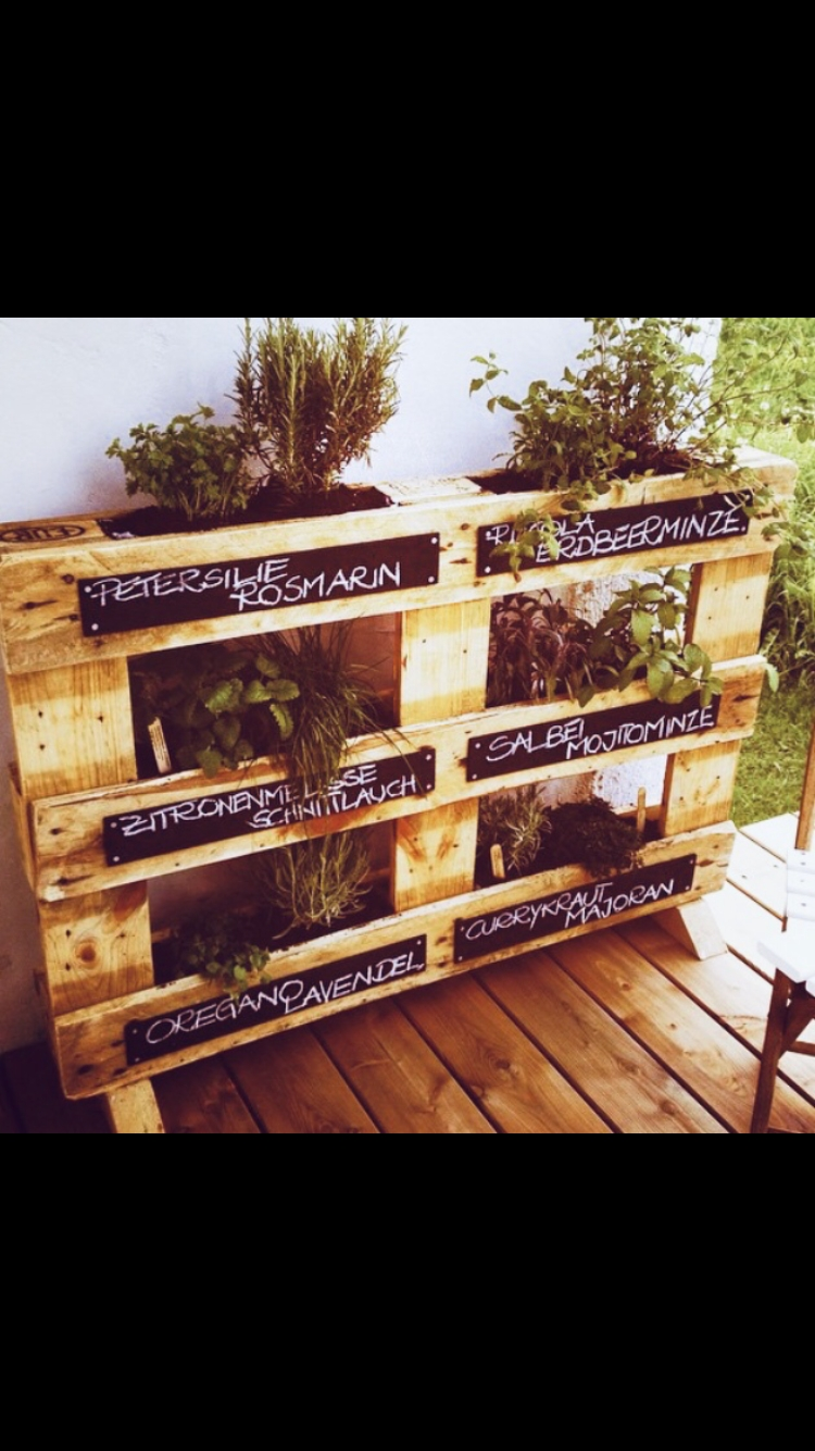 SPICE UP YOUR LIFE 💚 #diy #küchenkräuter #europalette #upcycling #springfeelings #diyproject #livingchallenge #greenery