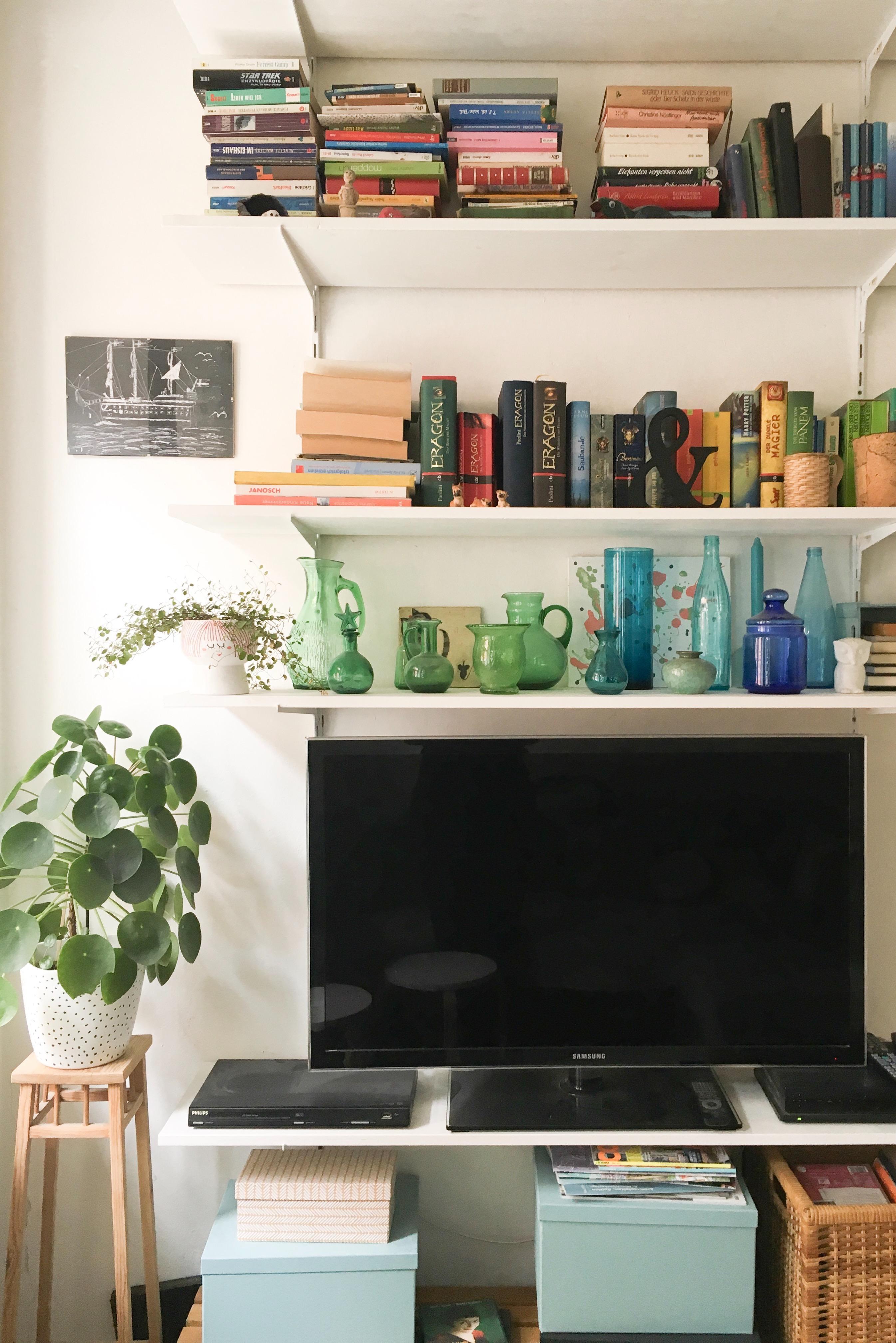 Tvwand Wohnzimmer Pflanze Pilea Regal Simpel Onabudget Diy