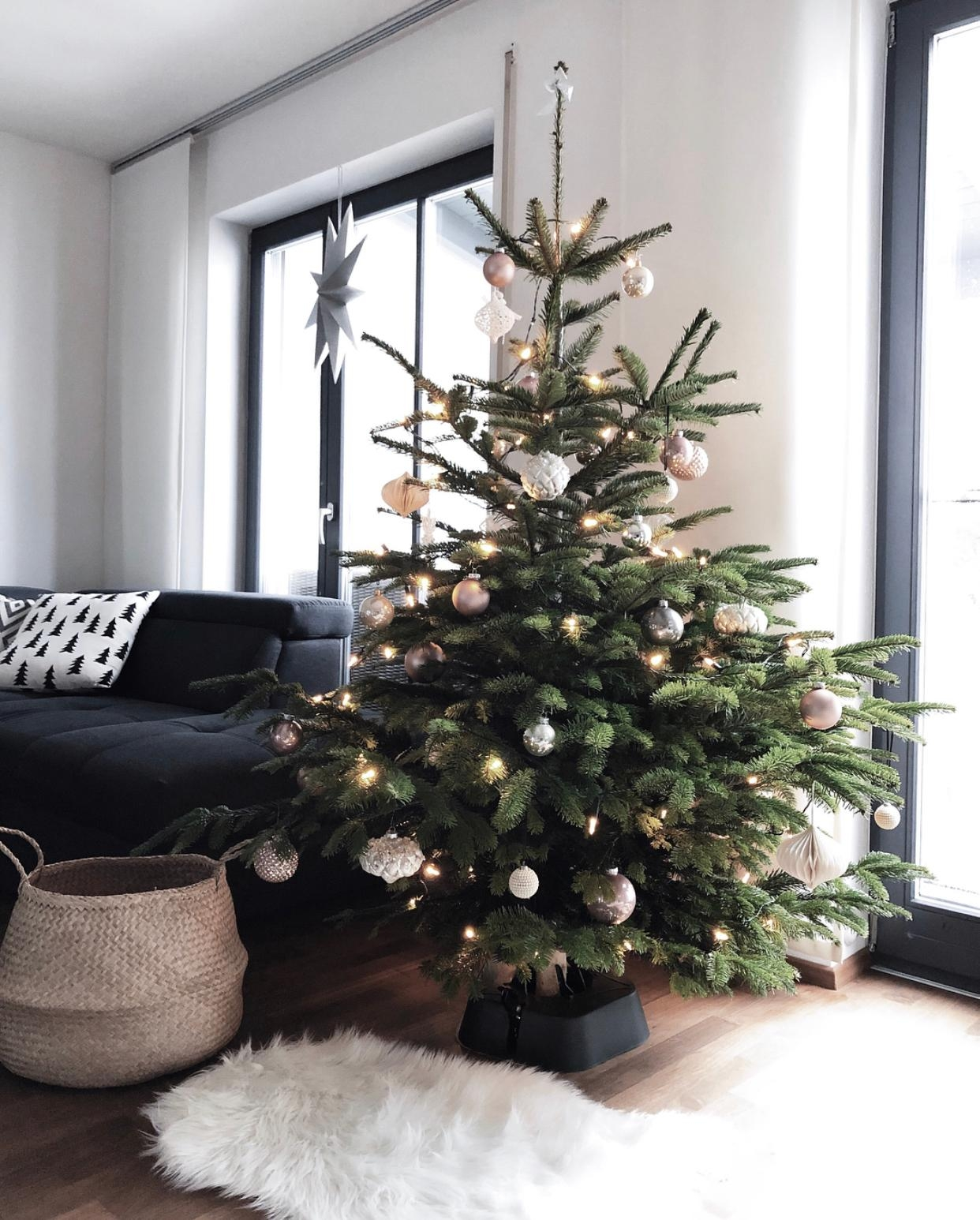 Unser weihnachtsbaum 2018  tanne xmas christmastree  5cd36d93 3b53 4292 b13e b56a9c1e5bf4