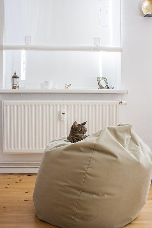 Unsere Pieps Im #sitzsack ♡ #wohnzimmer #katze #catcontent #sonnenschein  #deko