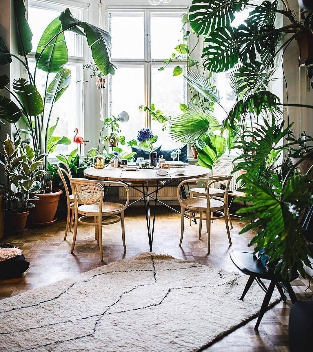 Urban jungle inspiration urbanjungle rug plants ....