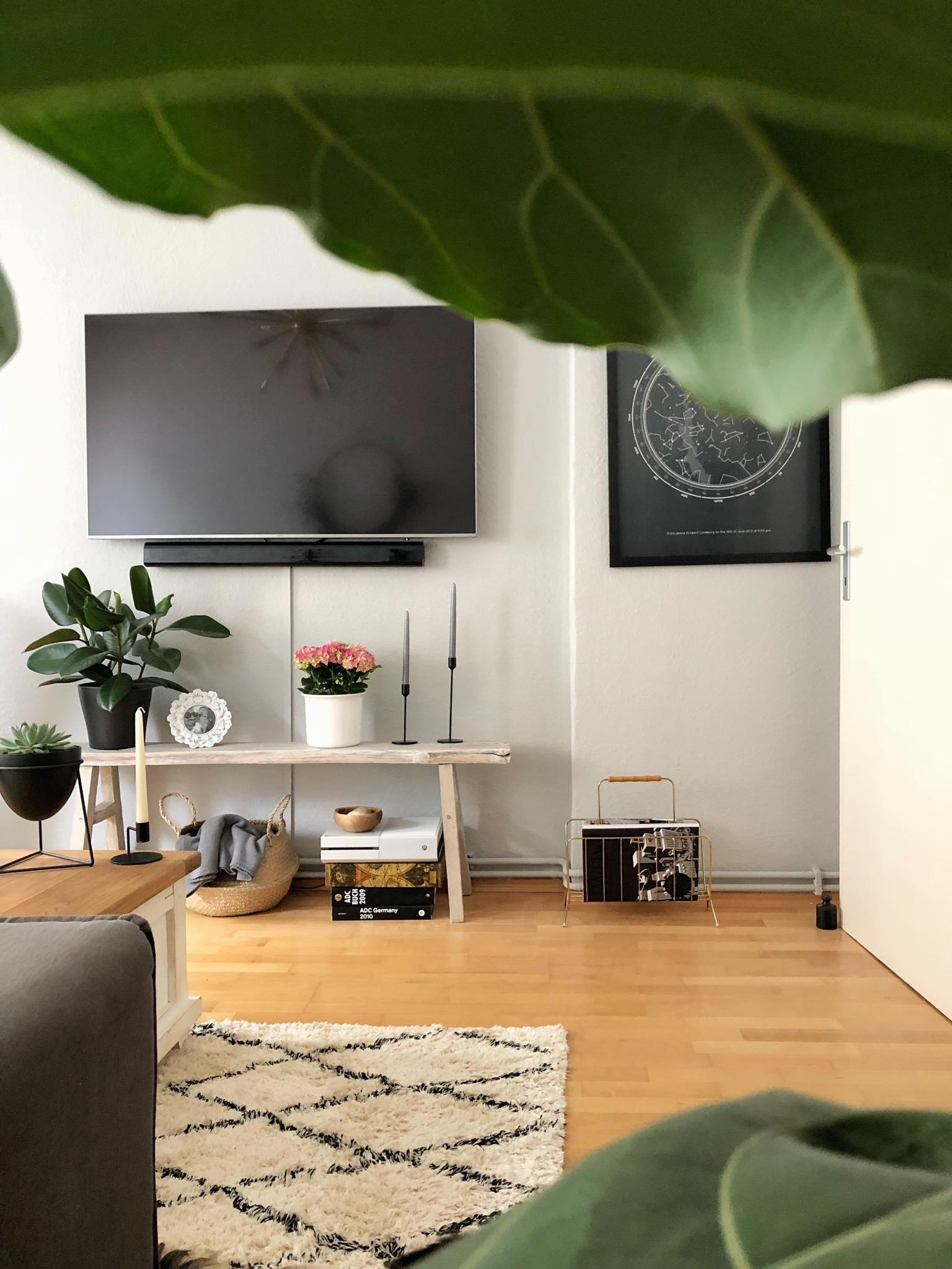 Urban Jungle #plantlove #geigenfeige #interiorgoals #livingroomdecor #scandiliving