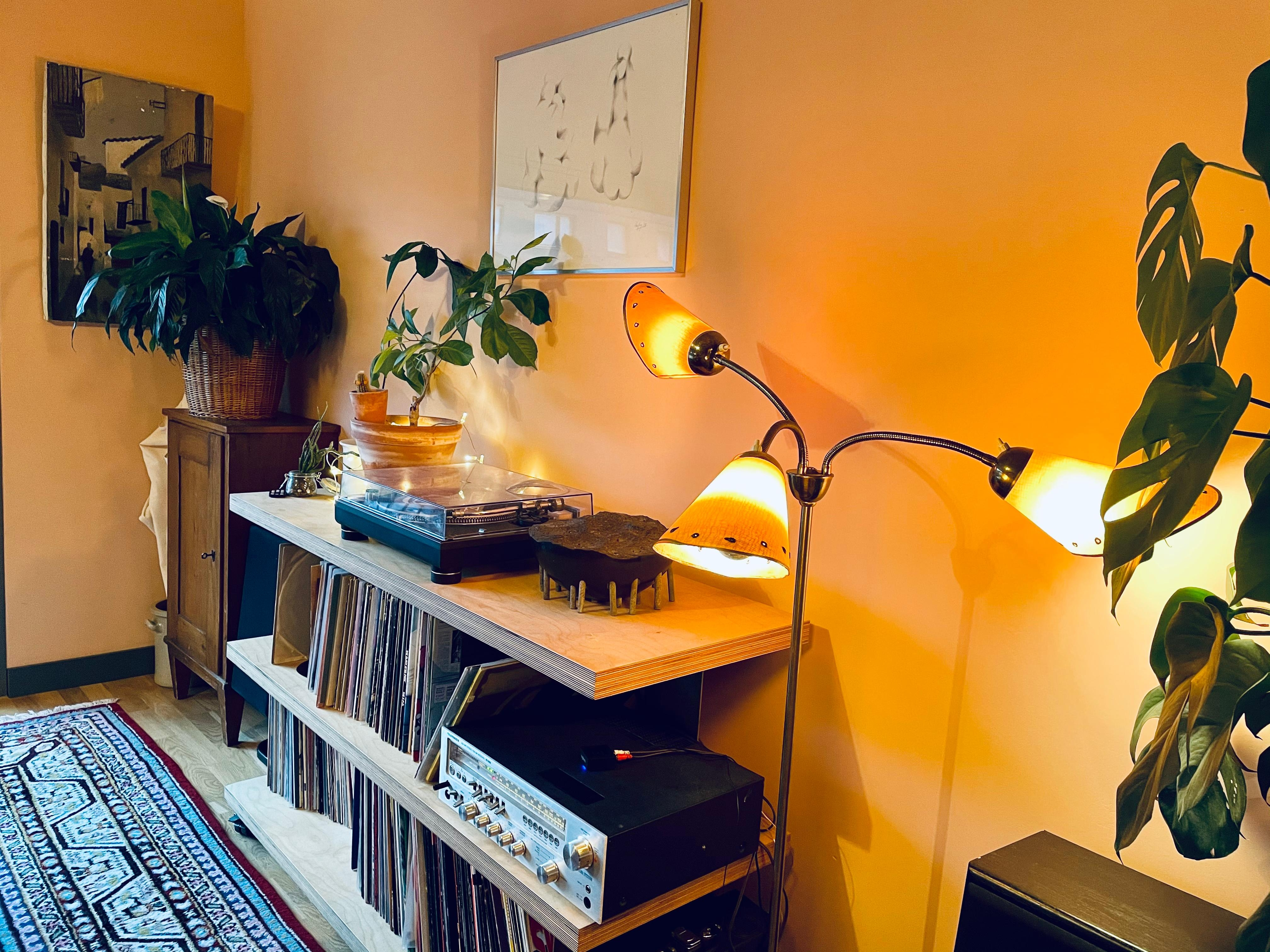 #vinyl #baobab #monstera #urbanjungle #livingroom #lescouleurs #lecorbusier