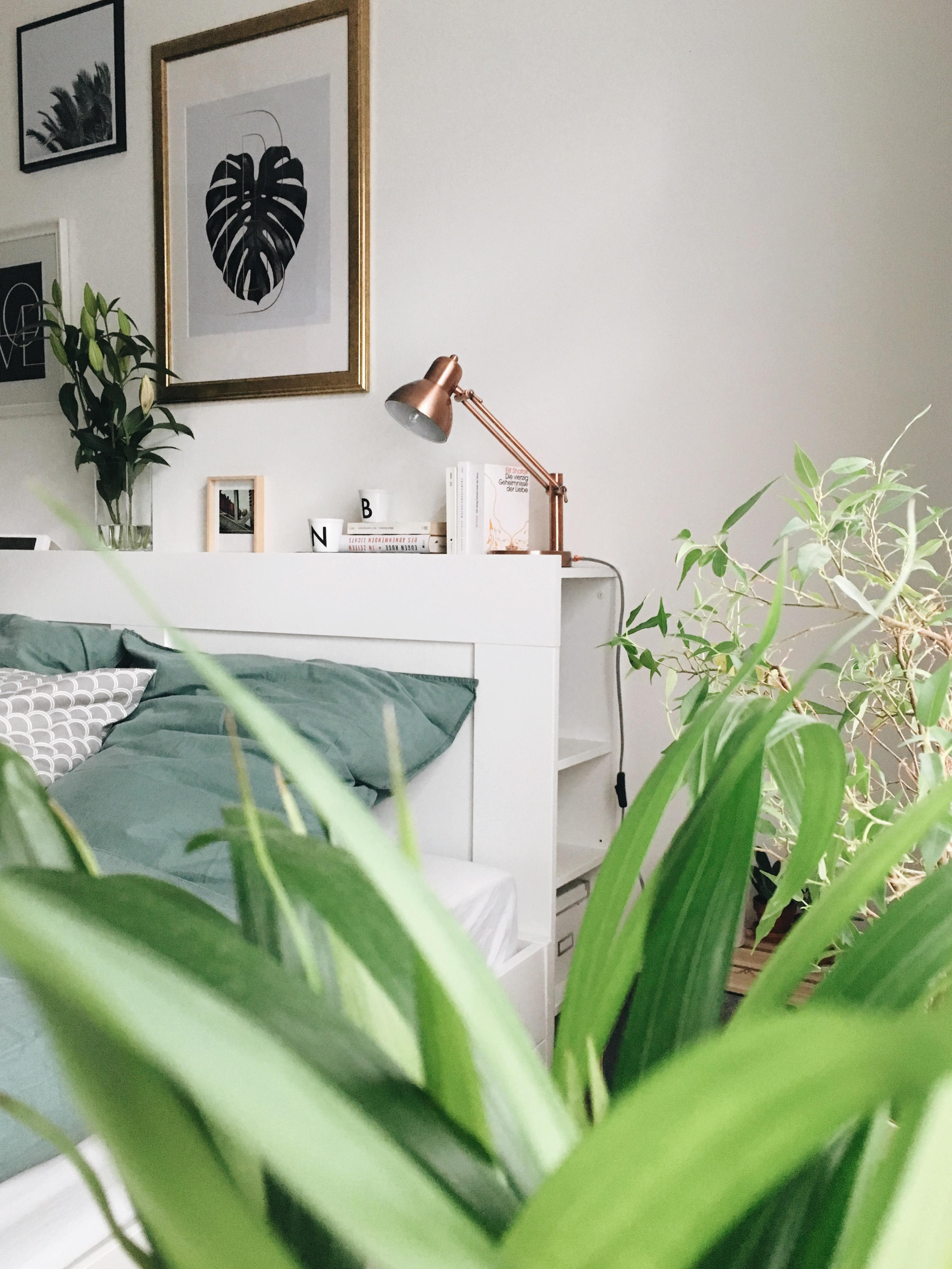 Welcome to the urban jungle! #schlafzimmer #urbanjungle #scandistyle
